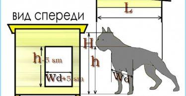 Izmēri kabīnes gani, Alabai suņi un citi