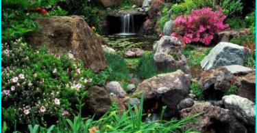 Ūdenskritums ar savām rokām valstī un dārzā - Walkthrough