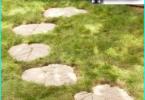 Zemu augošu dārza puķes: izvēli no labākajiem šķirņu puķu dobes