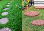 Stealth zāliena stādīšanas karstā vasarā: kā ietaupīt zāli no saules