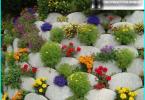 Darbs dārzā Martā: kā rūpēties par savu dārzu?
