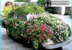 Kā izvēlēties motorzāģi mājai un dārzam - kas ir labāks un kāpēc?