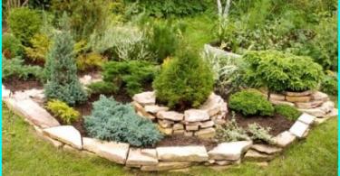 Kā izvēlēties dārza smidzinātājs: pārskats par iespējām + padomus par izvēloties