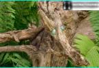 Peldbaseins apkope - kā jūs tīru + ūdens attīrīšanas sistēmas pārskatīšana